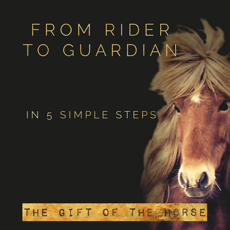 From Rider to Guardian