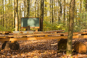 empty outdoor class room in forest with