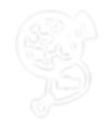 Nonis-Icons-Medium-10-Wings-White.png