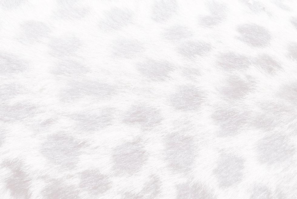 Kopi%20af%20brown-and-black-textile-8012