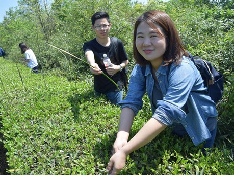 Chinese Tea Culture Tour