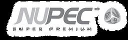 LogoNupec.png