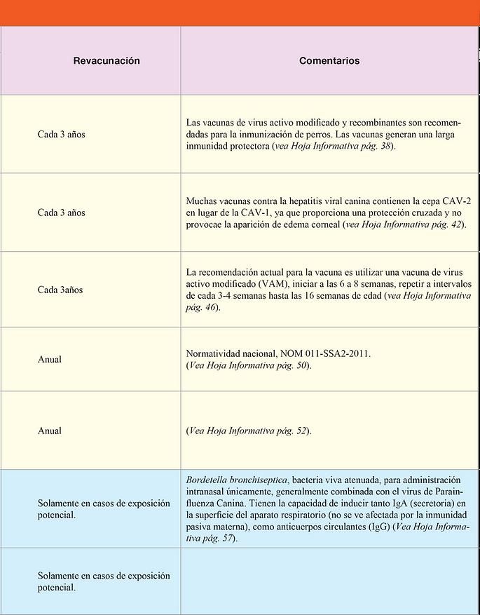 Guías de Vacunación_8.png