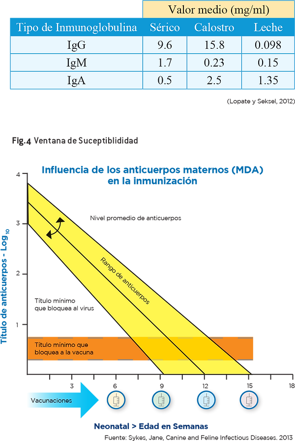 Utilización_de_la_inmunoglobulina_IgY_3.