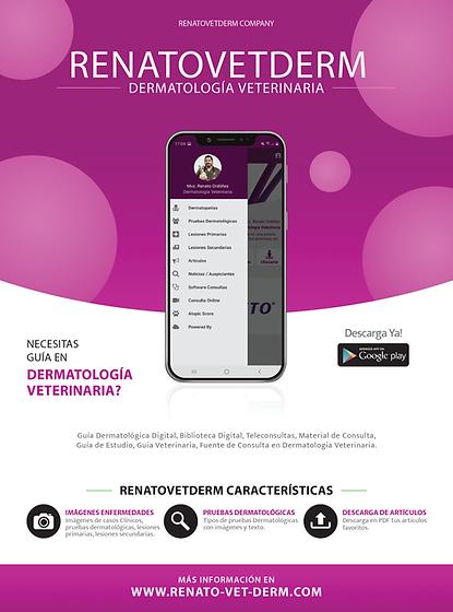 RenatoVetDerm _011.png