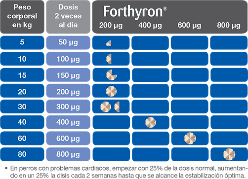 Fifura_5.png