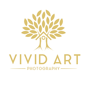 vivid_art_logo_v_2.png