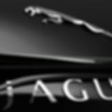 Jaguar-Banner.png