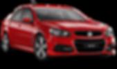 Holden v6 logbook service