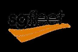 fleet-logo-sgfleet.png