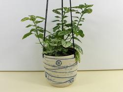 'Button & Thread' 'Hanging Planter