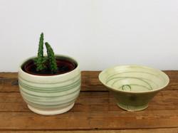 Mishima Warm Green dish & cactus planter