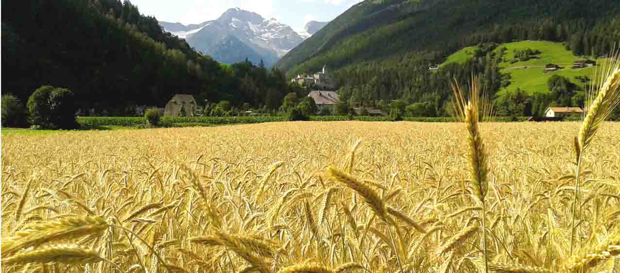 Frenes Urlaub in Südtirol