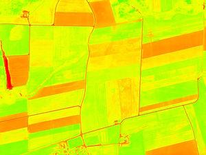 agriculture_X.jpg