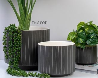 Blurred Lines Pot