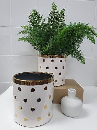 Gold Spot Pot