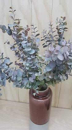 Faux Silver Dollar Plants