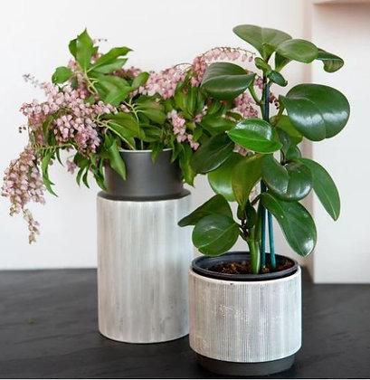 Ravel Vase