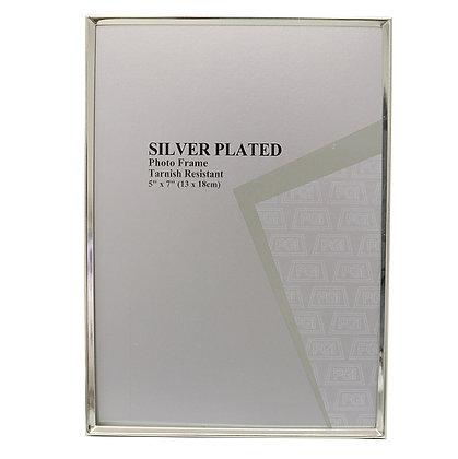 Sleek Silver Frame
