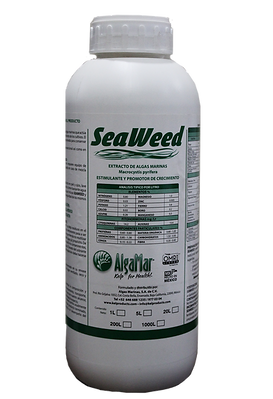 Kelp growth promoter - seaweed extract