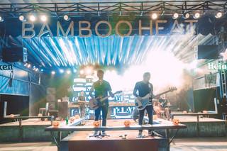 SHADYLANES Bamboo Heat.jpg