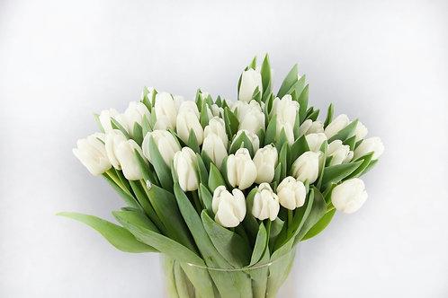 Ramo Tulipán Blanco