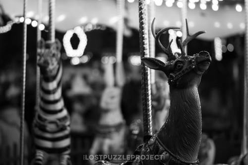 The carousel bnw