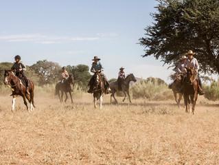 M&M Koiimasis Ranch Horse Versatility Clinic.