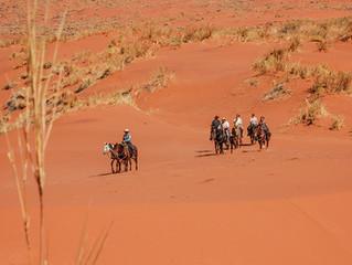 Cowboy Trail #1 Success!