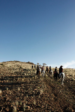 Ranch Koiimasis Volunteers