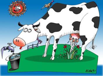 El agro en Uruguay: renta del suelo, ingreso laboral y ganancias