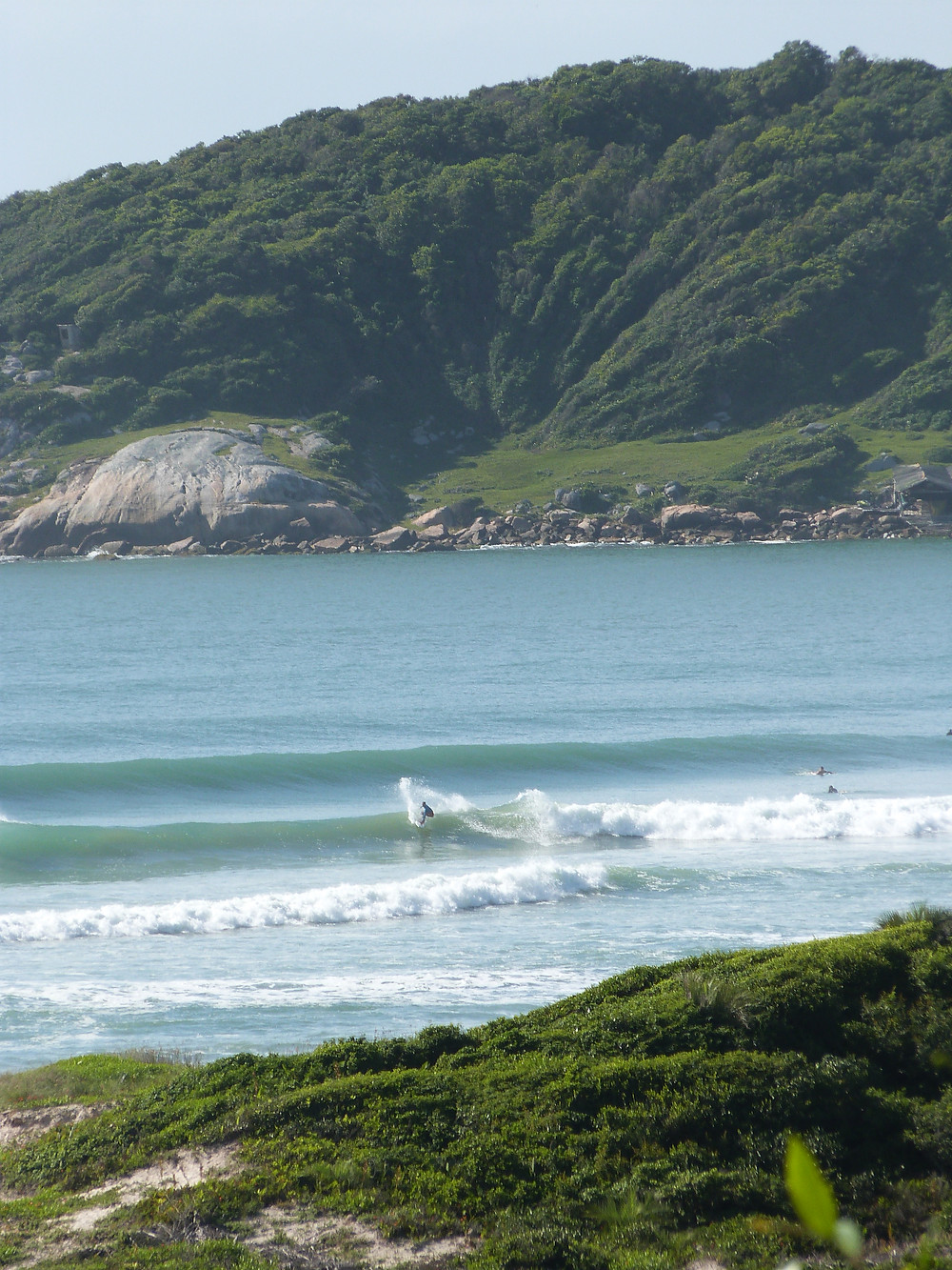 Surfer in praia do Rosa Brazil