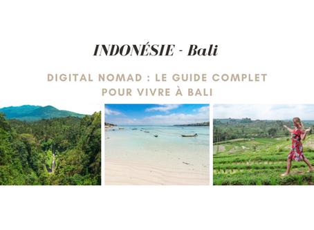 Digital Nomad : Le guide complet pour vivre en Indonésie à Bali