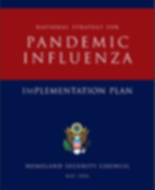 Pandemic Influenza.PNG