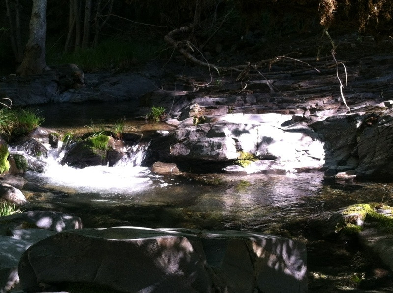 Coyote Creek at Henry Coe Park