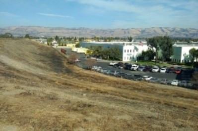 Revitalizing Coyote Meadows