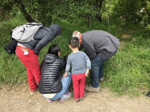 Group investigates
