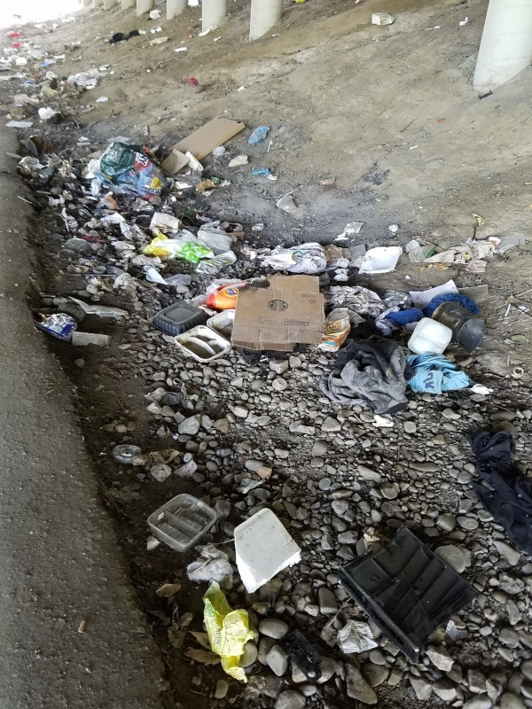 Before volunteers cleaned along the trai