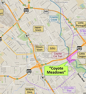 Coyote Meadows regional map