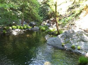 Upper Creek Paige