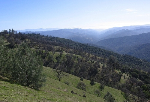 Rolling Hills at Henry Coe State Park