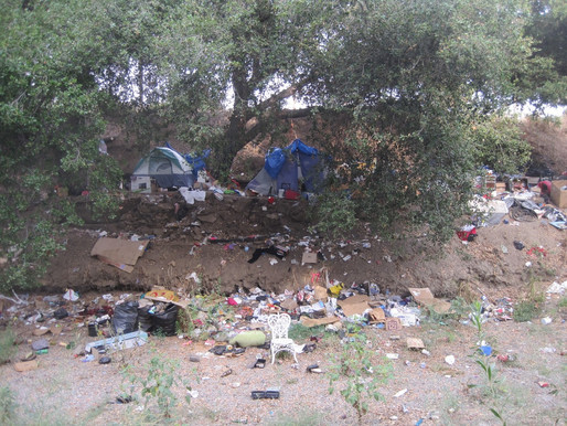 Effect of Homelessness on the Creek