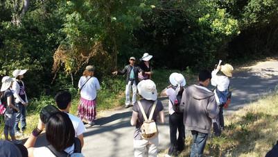 Arvind Kumar talks about the Cottonwood
