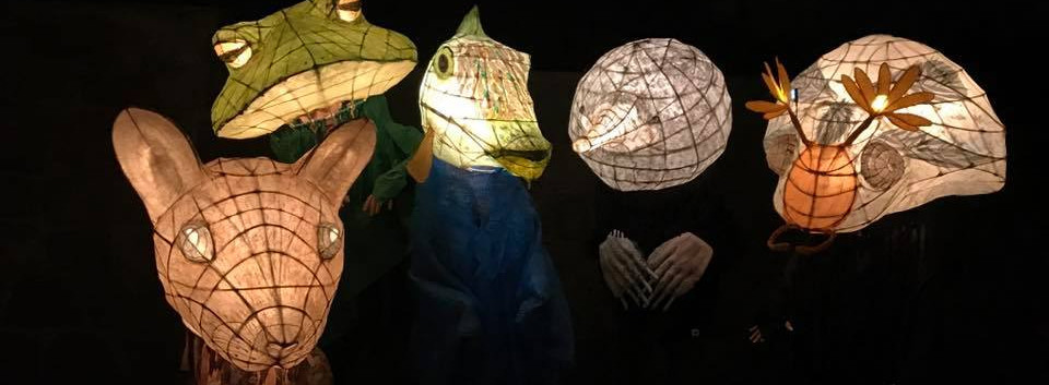 Animal Lantern Masks