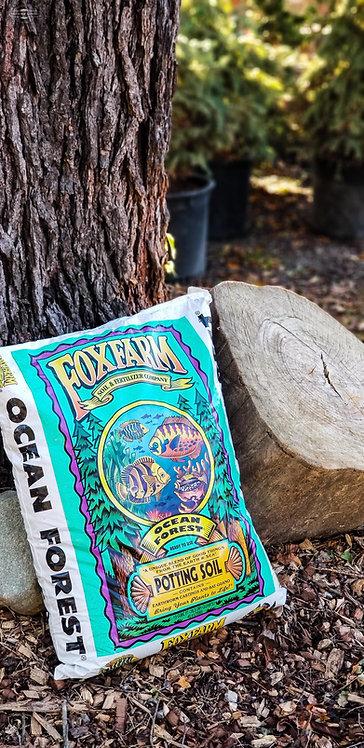 FoxFarm Ocean Forest Soil