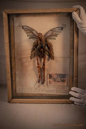 Dead Fairy / Död Älva