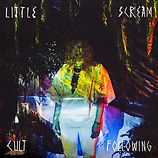 Little_Scream_Cult_Following_cover.jpg