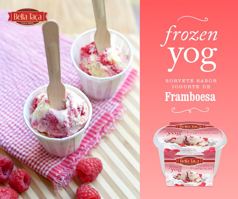 Frozen Yog - Iogurte de Framboesa