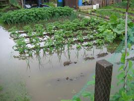 Floods 2007