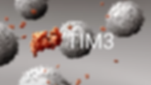 Tim-3_decouvertes_edited.png